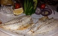 Tarihi Semtte Sultanahmet Fuego Restaurant'ta İçki Dahil Balık veya Leziz Yemek Menüleri 39.90 TL'den Başlayan Fiyatlarla!