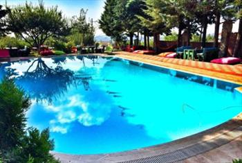 Beylikd�z� Bahar Bah�e Cafe & Restaurant'ta Kahvalt� + ��ecek E�li�inde Izgara Et Men�s� ve Havuz Giri�i 130 TL Yerine 79.90 TL!