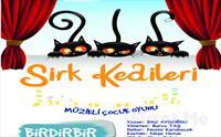 Birdirbir Çocuk Tiyatrosu'ndan Cevahir AVM Fun Lab Çocuk Sahnesi'nde SİRK KEDİLERİ Tiyatro Oyunu 25 TL yerine Sadece 14.90 TL!