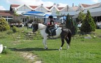 Silivri Erkanlı Tatil Köyü'nde, Serpme Köy Kahvaltısı + At Binme + Kapalı Havuz + Sauna + Jakuzi Kullanımı 105 TL Yerine Sadece 54.90 TL!