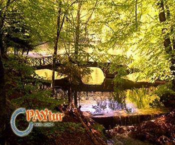 YED�G�LLER : Paytur'dan Yedig�ller de Muhte�em Anlar...Milli Park Gezisi, G�len Kayalar, Dilek �e�mesi'nde Y�r�y�� ve 500 Y�ll�k An�t�am'a Gezi...