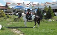 Silivri Erkanlı Tatil Köyü'nde, Serpme Kahvaltı, At Binme, Kapalı Havuz, Sauna, Jakuzi Kullanımı 170 TL Yerine 89.90 TL
