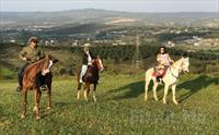Gebze Atlı Spor Kulübü'nde Doğada Kahvaltı, At Binme, Doğada Atlı Safari 40 TL yerine 24.90 TL'den Başlayan Fiyatlarla